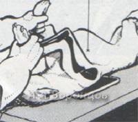 рисунок 2а